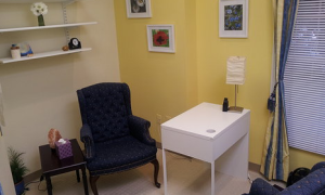 Holistic Maryland Daisy Consult Room