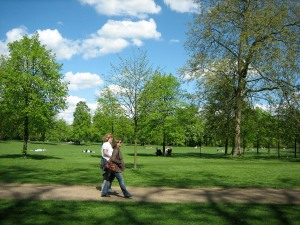 image of a walk in the park